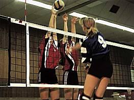 Volleyball-Turniernetz aus Polypropylen, hochfest, ca. 4 mm stark, 9,50 m lang, Maschenweite 10 cm, schwarz